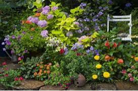 Can you design your own garden?